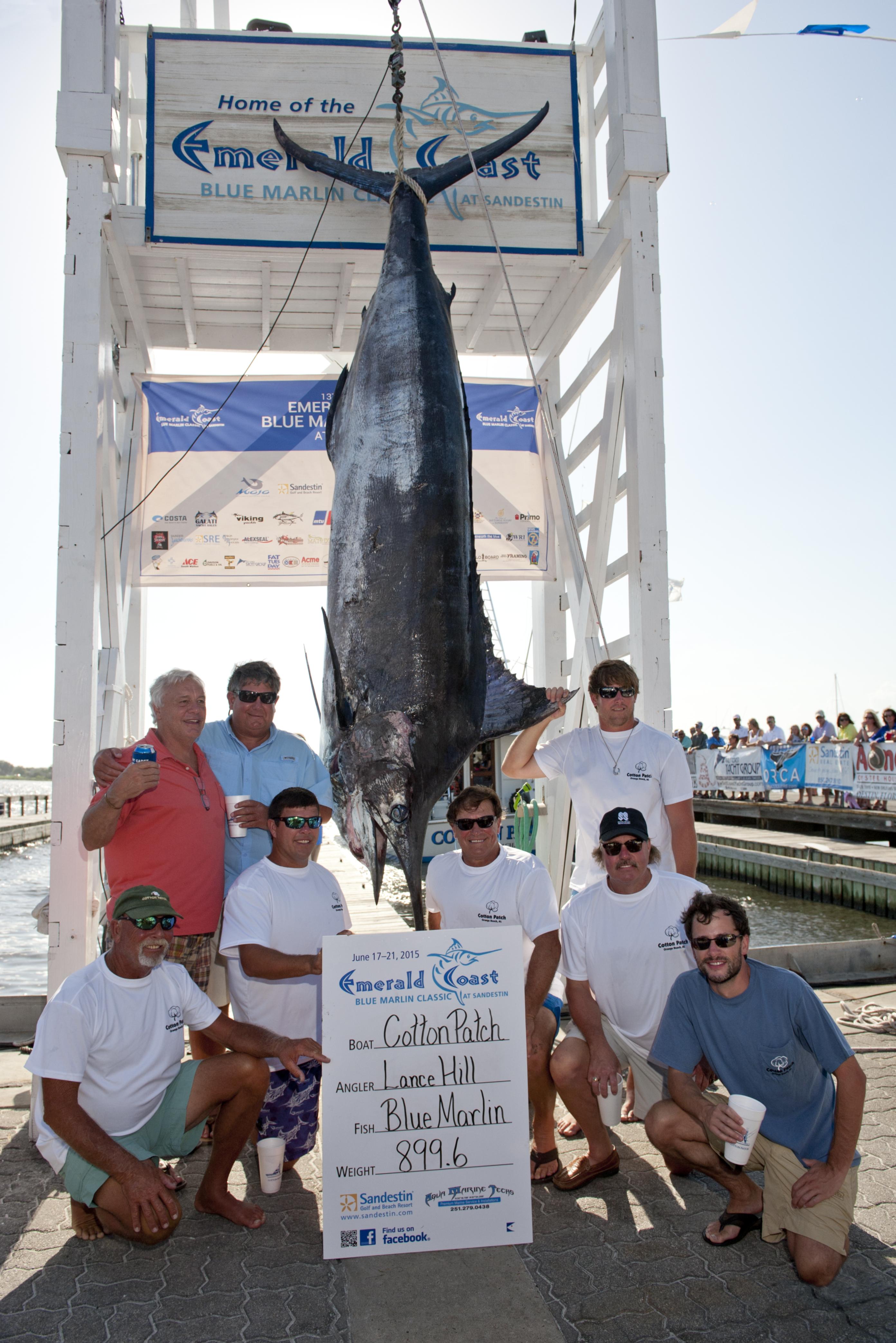 Destin Fishing News
