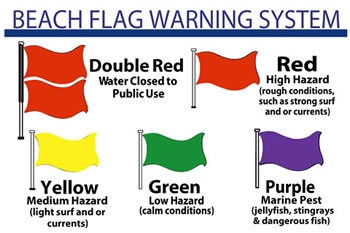 Liuards And Beach Flag Warning System